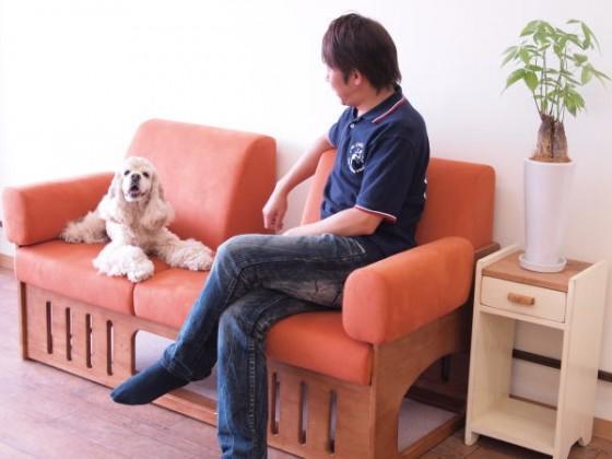おむすびもお気に入り。犬との快適生活ソファ