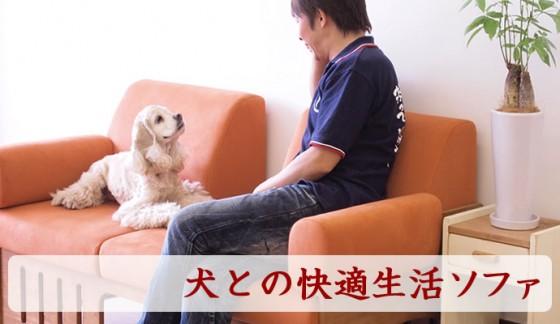 犬との快適生活ソファ