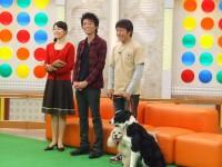 NHKで犬の先生をやっています!