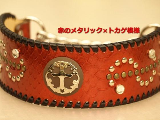 赤色のメタリック 幅広首輪