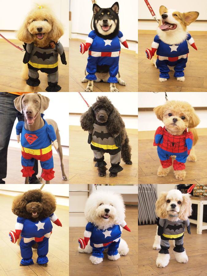 スーパーヒーロー達