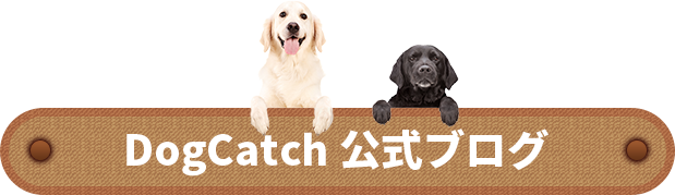 DogCatch 公式ブログ