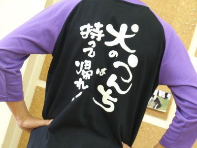 20080410_260067
