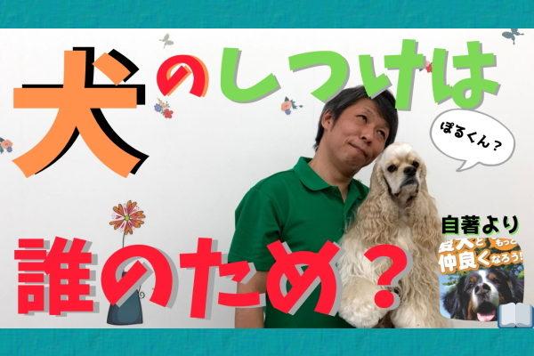 犬のしつけは誰のため?